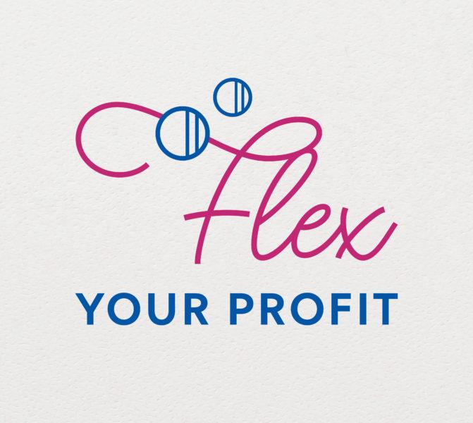 Flex Your Profit huisstijl